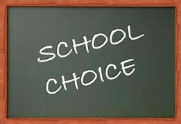 More Choices for Parents?