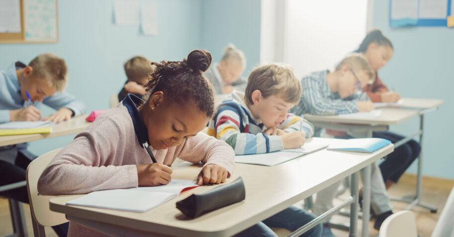 Diversity in the Christian School