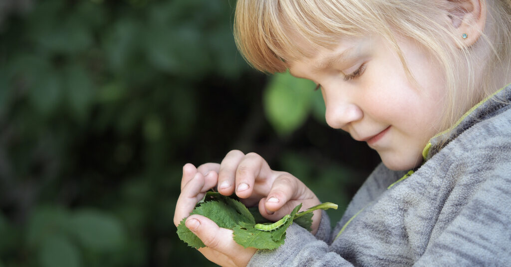 Image of girl studying a caterpillar